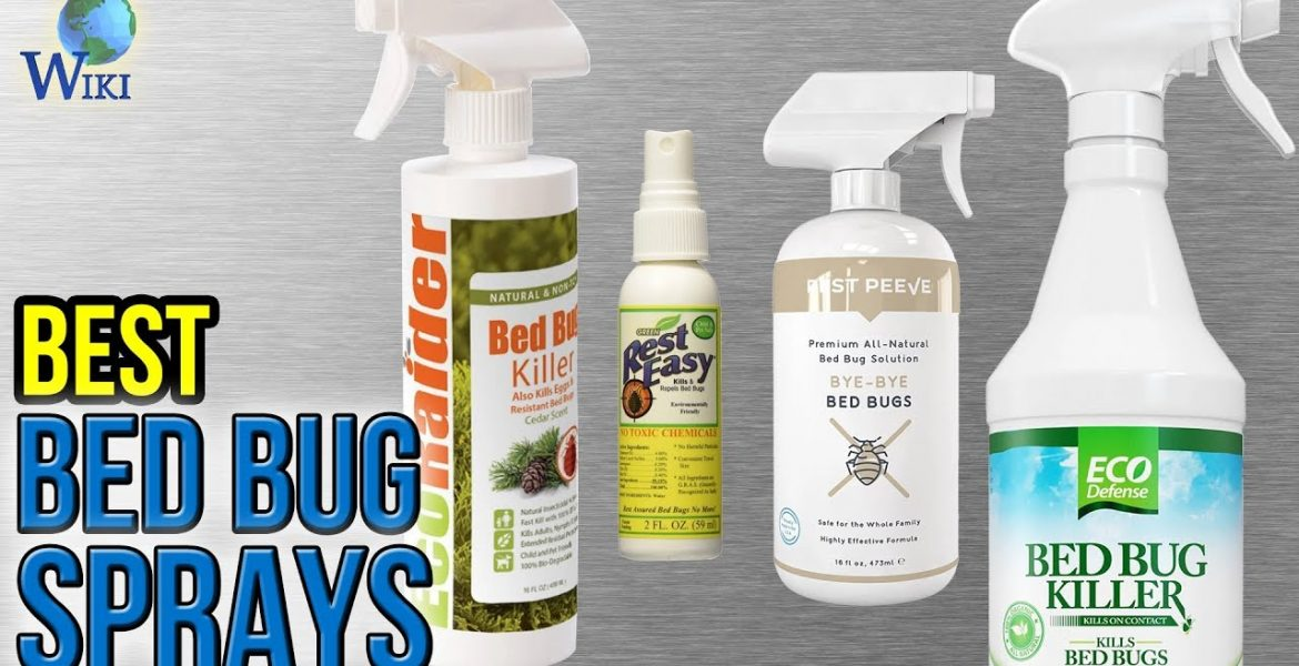 Finest Bed Insect Spray Is Essential On Your Success